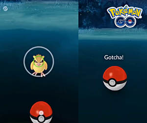 Catch Pokemon Pokémon Go