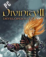 Divinity 2 Developers Cut