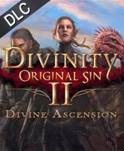 Divinity Original Sin 2 Divine Ascension