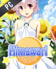 Himawari The Sunflower