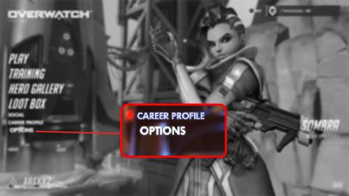 Overwatch Career Profile Options
