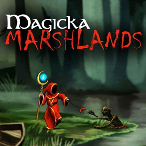 Buy Magicka Caverns and Magicka Marshlands CD Key Compare Prices