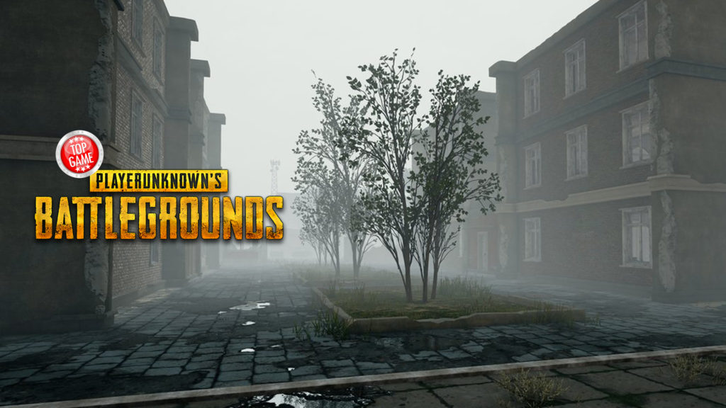 PlayerUnknown's Battlegrounds Foggy Weather Cover