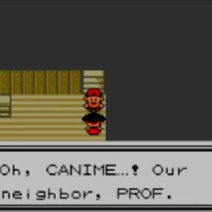 Catch all of the 100 Johto Region Pokémon