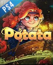 Potata fairy flower