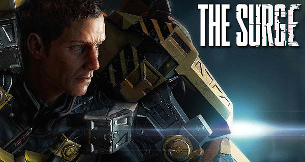 The Surge Information Cover