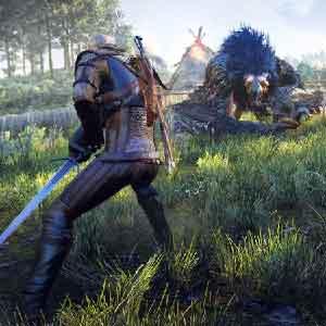 The Witcher 3 Wild Hunt Kill