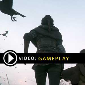 A Plague Tale Innocence Gameplay Video