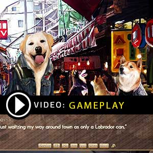 A Summer with the Shiba Inu Gameplay Video