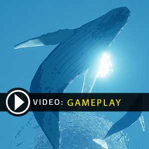 Abzu Gameplay Video