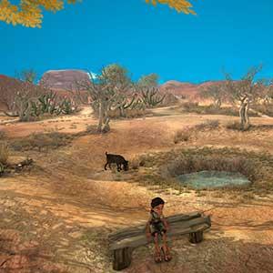 Arida Backland