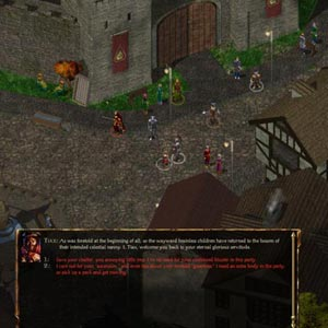 Baldur's Gate Enhanced Edition Castle