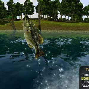 Quick Fish
