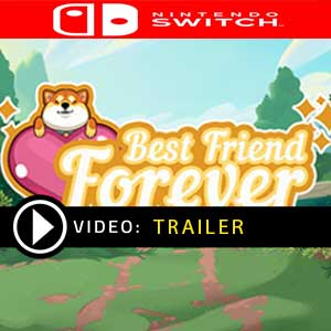 Best Friend Forever Nintendo Switch Prices Digital or Box Edition