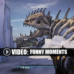 Borderlands 2 Funny Moments