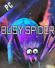 busy spider