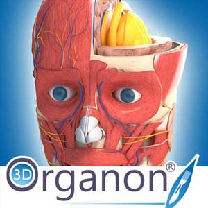 Buy 3D Organon Anatomy CD Key Compare Prices