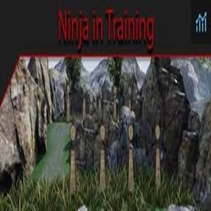 A Ninja in Traning