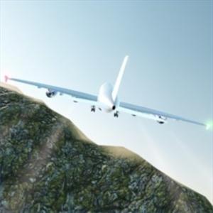 Airbus Pilot Flight