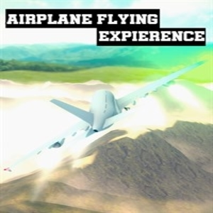 Airplane Flying Expierence
