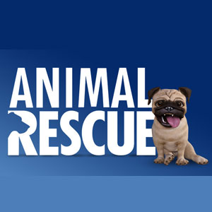 Buy Animal Rescue PS4 Compare Prices