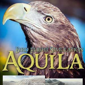 Aquila Bird Flight Simulator