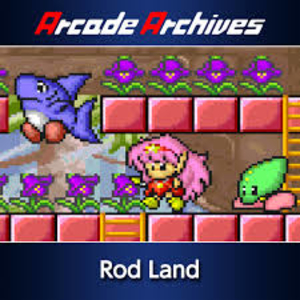 Arcade Archives Rod Land