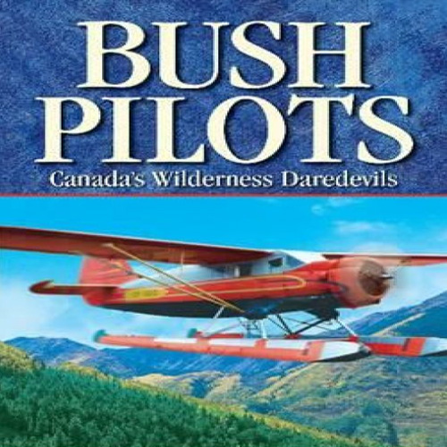Buy Aviator Bush Pilot CD Key Compare Prices