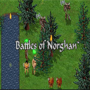 Buy Battles of Norghan CD Key Compare Prices