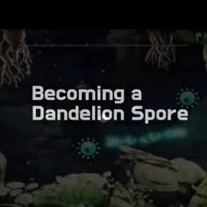 Becoming a Dandelion Spore