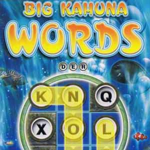 Buy Big Kahuna Words CD Key Compare Prices