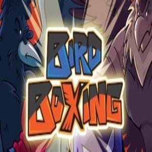 Bird Boxing