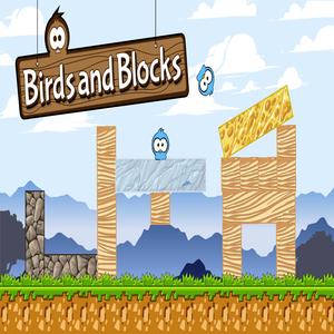 Birds and Blocks