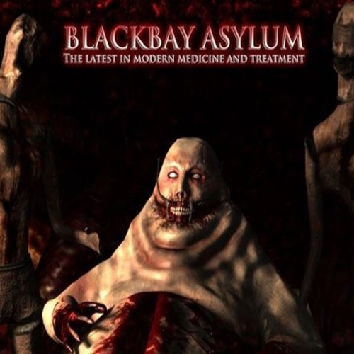 Buy Blackbay Asylum CD Key Compare Prices