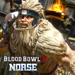 Buy Blood Bowl 2 Norse CD Key Compare Prices