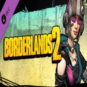 Borderlands 2 Mechromancer Beatmaster Pack