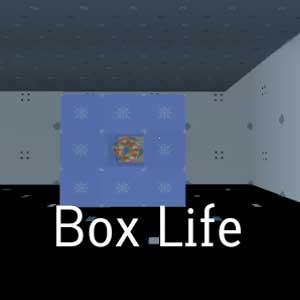 boxlife