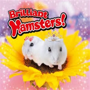 Buy Brilliant Hamsters Nintendo 3DS Compare Prices