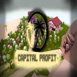 Capital Profit