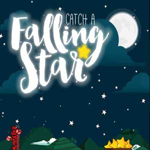 Buy Catch a Falling Star CD Key Compare Prices