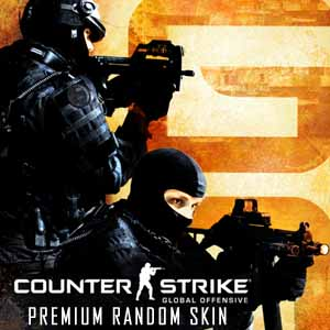 Buy CSGO 1 Premium Random Skin CD Key Compare Prices