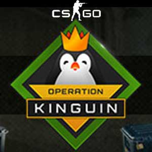 CSGO Operation Kinguin Case