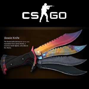 Buy CSGO Random Bowie Knife Skin CD Key Compare Prices