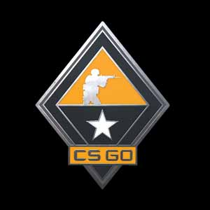 Buy CSGO Series 1 Tactics Collectible Pin CD Key Compare Prices