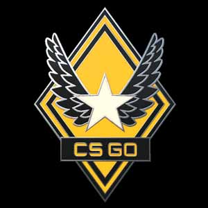 CSGO Series 1 Victory Collectible Pin