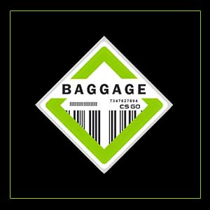 Buy CSGO Series 2 Baggage Collectible Pin CD Key Compare Prices