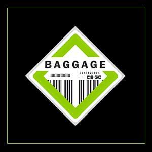 CSGO Series 2 Baggage Collectible Pin