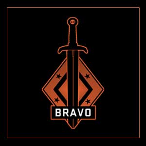 Buy CSGO Series 2 Bravo Collectible Pin CD Key Compare Prices