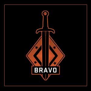 CSGO Series 2 Bravo Collectible Pin
