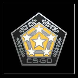 Buy CSGO Series 2 Chroma Collectible Pin CD Key Compare Prices